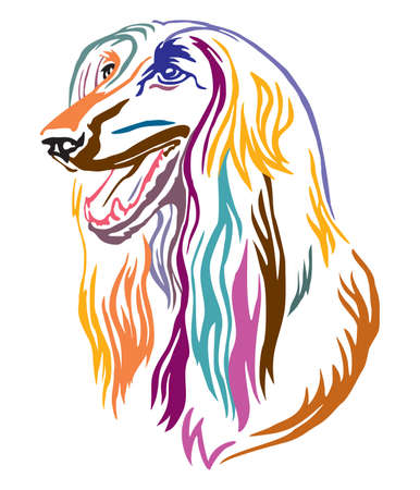 Colorful decorative outline portrait of Afghan Hound Dog looking in profile, vector illustration in different colors isolated on white background. Image for design and tattoo. Иллюстрация