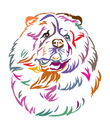 Colorful decorative outline portrait of Chow Chow Dog looking in profile, vector illustration in different colors isolated on white background. Image for design and tattoo.