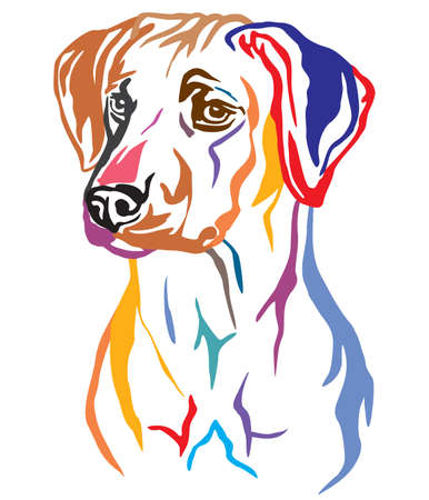 Colorful decorative outline portrait of Rhodesian Ridgeback Dog looking in profile, vector illustration in different colors isolated on white background. Image for design and tattoo. 向量圖像
