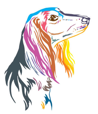 Colorful decorative outline portrait of  Saluki Dog looking in profile, vector illustration in different colors isolated on white background. Image for design and tattoo.