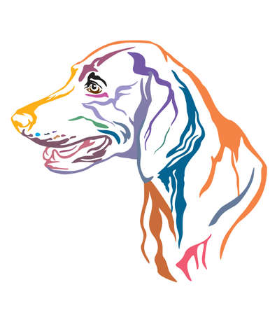 Colorful decorative outline portrait of Weimaraner Dog looking in profile, vector illustration in different colors isolated on white background. Image for design and tattoo.