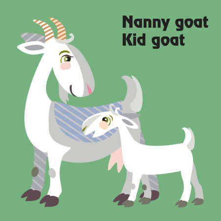 Colorful decorative outline funny white nanny goat and kid goat standing in profile.  Farm animals and birds vector cartoon flat illustration in different colors isolated on green background.