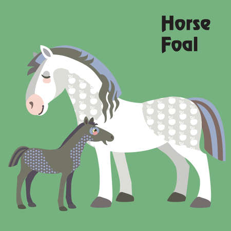 Colorful decorative outline cute white horse with black foal standing in profile. Farm animals and birds vector cartoon flat illustration in different colors isolated on green background.
