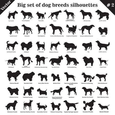 Gran conjunto de 49 perros diferentes, sabuesos, de trabajo, pastor, terrier, compañero, caza. Conjunto de vector de diferentes perros en perfil. Los perros aislados crían siluetas en color negro sobre fondo blanco. Parte 2 Ilustración de vector