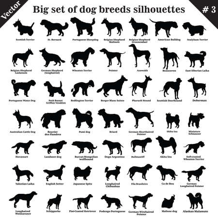 49種類の犬、猟犬、働く、羊飼い、テリア、仲間、狩猟の大きなセット。プロファイルに立っている異なる犬のベクトルセット。孤立した犬は、白い背景に黒い色で設定されたシルエットを繁殖させます。パート3