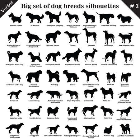 Grande set di 49 diversi cani, segugi, da lavoro, pastore, terrier, da compagnia, da caccia. Insieme di vettore di diversi cani in piedi di profilo. Cani isolati razza sagome impostate in colore nero su sfondo bianco. Parte 3