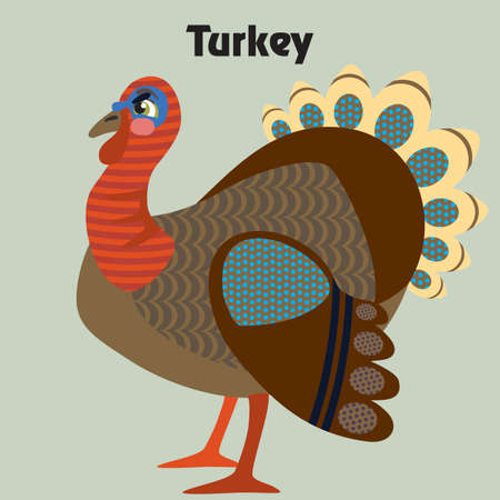 Colorful decorative outline funny colorful turkey standing in profile.  Farm animals and birds vector cartoon flat illustration in different colors isolated on grey background.