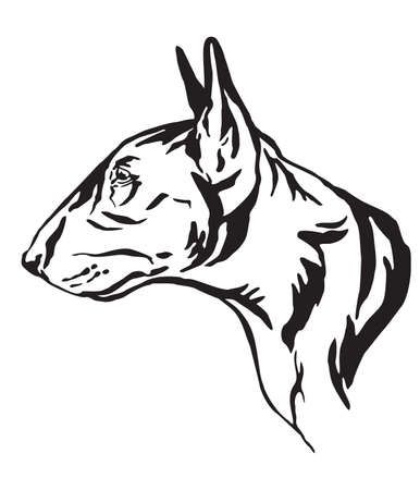 Decorative outline portrait of Bull Terrier Dog looking in profile, vector illustration in black color isolated on white background. Image for design and tattoo.