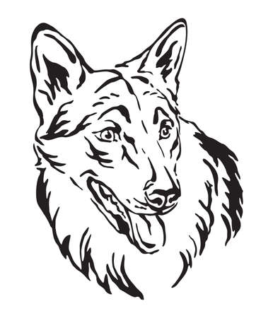 Decorative outline portrait of Dog Czechoslovakian Wolfdog looking in profile, vector illustration in black color isolated on white background. Image for design and tattoo. Ilustrace