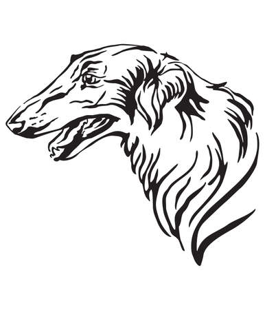 Decorative outline portrait of Dog Russian wolfhound looking in profile, vector illustration in black color isolated on white background. Image for design and tattoo.