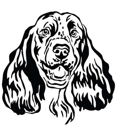 Decorative outline portrait of Dog Springer Spaniel, vector illustration in black color isolated on white background. Image for design and tattoo.