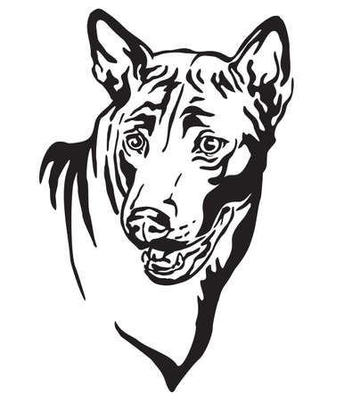Decorative outline portrait of Dog Thai Ridgeback looking in profile, vector illustration in black color isolated on white background. Image for design and tattoo.