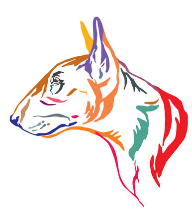 Colorful decorative outline portrait of  Bull Terrier Dog looking in profile, vector illustration in different colors isolated on white background. Image for design and tattoo.
