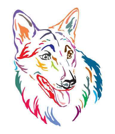 Colorful decorative outline portrait of Czechoslovakian Wolfdog Dog looking in profile, vector illustration in different colors isolated on white background. Image for design and tattoo.