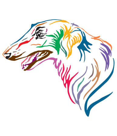 Colorful decorative outline portrait of Russian wolfhound Dog looking in profile, vector illustration in different colors isolated on white background. Image for design and tattoo.