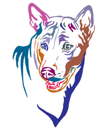 Colorful decorative outline portrait of Thai Ridgeback Dog, vector illustration in different colors isolated on white background. Image for design and tattoo.