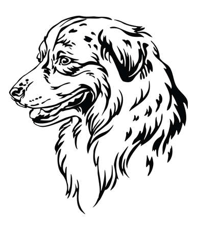Decorative outline portrait of Dog Australian Shepherd looking in profile, illustration in black color isolated on white background. Image for design and tattoo.