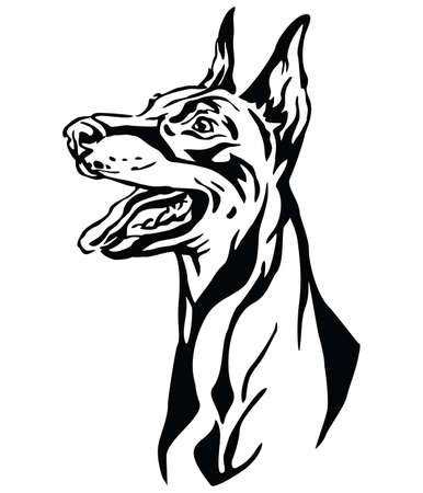 Decorative outline portrait of Dog Dobermann looking in profile, illustration in black color isolated on white background. Image for design and tattoo.