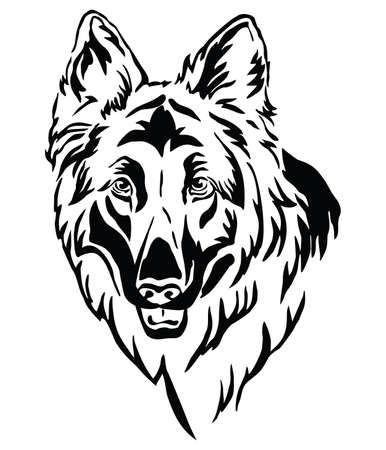 Decorative outline portrait of Dog Longhaired German Shepherd, illustration in black color isolated on white background. Image for design and tattoo.  イラスト・ベクター素材