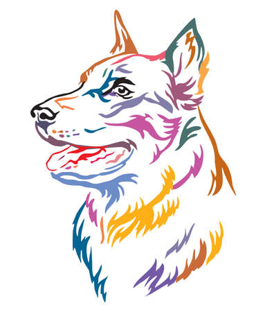 Colorful decorative outline portrait of Beauceron Dog looking in profile, illustration in different colors isolated on white background. Image for design and tattoo.
