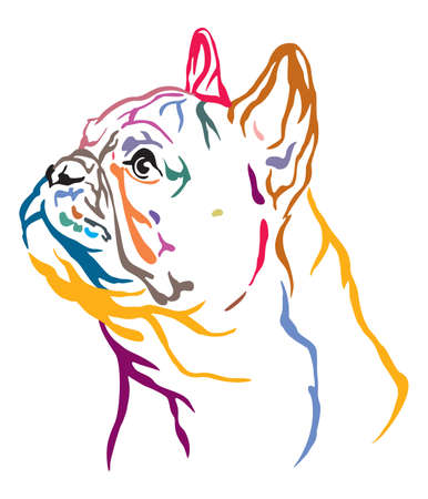 Colorful decorative outline portrait of French Bulldog Dog looking in profile, illustration in different colors isolated on white background. Image for design and tattoo.