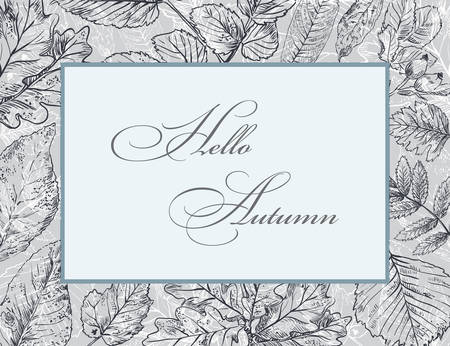 Hello Autumn, vector banner template with hand drawing leaves. Card can be used for invitation, special offer, poster. Vector frame of different autumn foliage in monochrome grey colors. Vector Illust  イラスト・ベクター素材