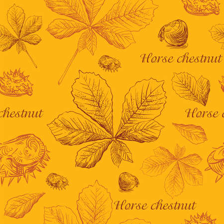 Vector autumn hand drawing seamless pattern with brown color horse chestnut  leaves and seeds outline on the orange background. Fall line art of foliage in different color. stock illustration