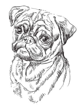 Pug vector hand drawing illustration in black color isolated on white background  イラスト・ベクター素材