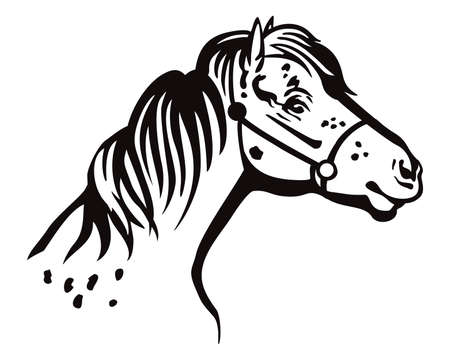 Monochrome decorative portrait in profile of pony in bridle, vector isolated illustration in black color on white background. Image for design and tattoo.