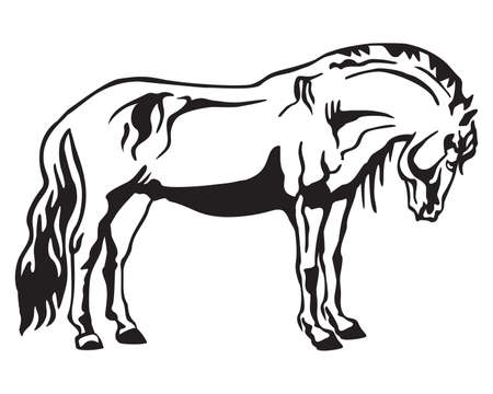 Monochrome decorative portrait of horse standing in profile, horse exterior. Vector isolated illustration in black color on white background. Image for design and tattoo.