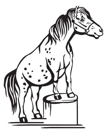 Monochrome decorative portrait of pony standing in profile on a stump, training pony. Vector isolated illustration in black color on white background. Image for design and tattoo. Illustration