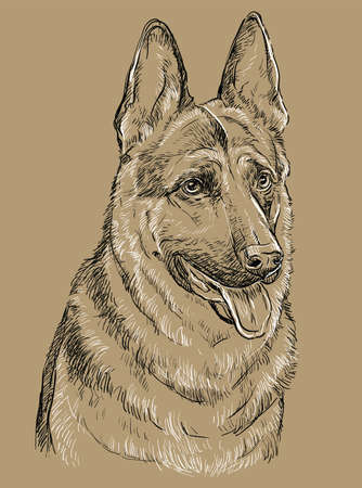 German Shepherd Dog vector hand drawing illustration in black and white colors isolated on beige background