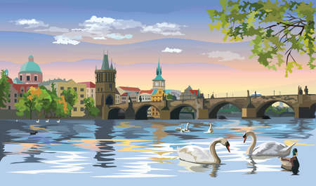 Colorful vectorIllustration Cityscape of Charles Bridge and swans in Vltava river in Prague. Landmark of Prague, Czech Republic. Colorful vector illustration of Landmark of Prague.  イラスト・ベクター素材