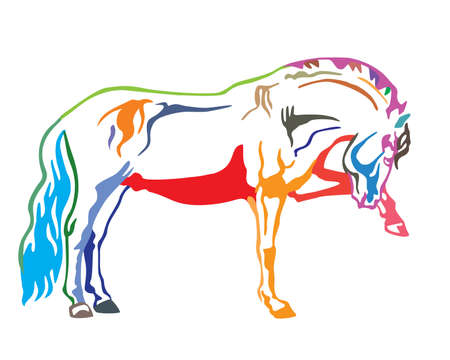 Colorful decorative portrait of horse standing in profile, horse exterior. Vector isolated illustration in different colors on white background. Image for design and tattoo. Illusztráció