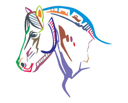 Colorful decorative portrait in profile of horse, vector isolated illustration in different colors on white background. Image for design and tattoo.