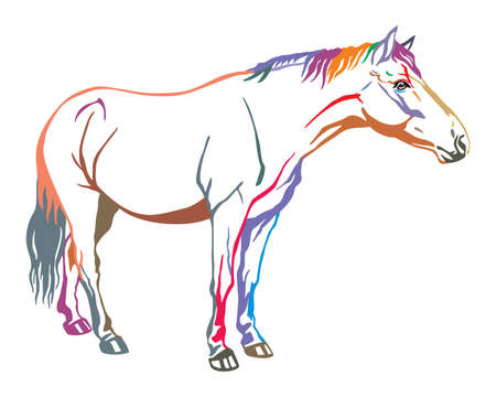 Colorful decorative portrait of horse standing in profile, horse exterior. Vector isolated illustration in in different colors on white background. Image for design and tattoo.