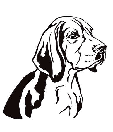 Decorative contour outline portrait of Dog Beagle looking in profile, vector illustration in black color isolated on white background. Image for design and tattoo. Ilustração