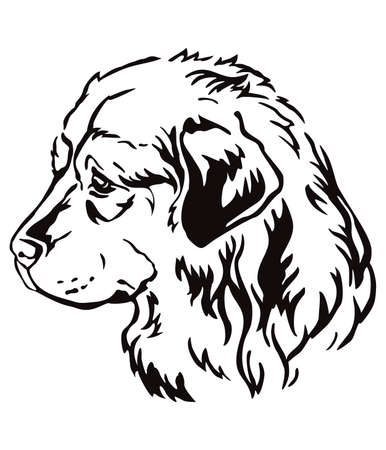 Decorative contour outline portrait of Caucasian Shepherd Dog looking in profile, vector illustration in black color isolated on white background. Image for design and tattoo. Illusztráció