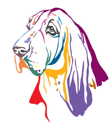 Colorful decorative contour outline portrait of Dog Basset Hound looking in profile, vector illustration in different colors isolated on white background. Image for design and tattoo.