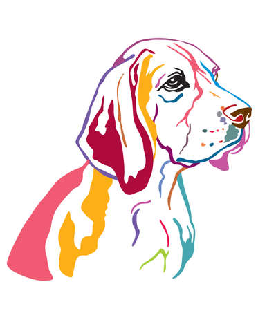 Colorful decorative contour outline portrait of Dog Beagle looking in profile, vector illustration in different colors isolated on white background. Image for design and tattoo.