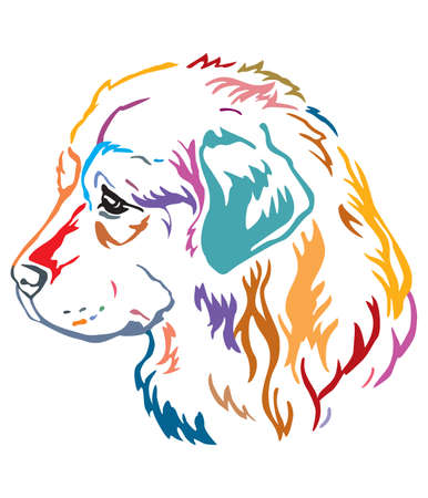 Colorful decorative contour outline portrait of Dog Caucasian Shepherd looking in profile, vector illustration in different colors isolated on white background. Image for design and tattoo.