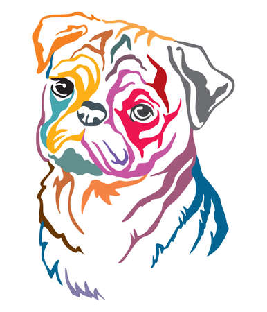 Colorful decorative contour outline portrait of Dog  Pug, vector illustration in different colors isolated on white background. Image for design and tattoo.