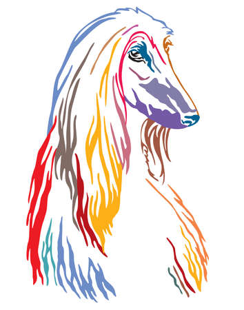 Colorful decorative contour outline portrait of Dog Afghan Hound looking in profile, vector illustration in different colors isolated on white background. Image for design and tattoo.