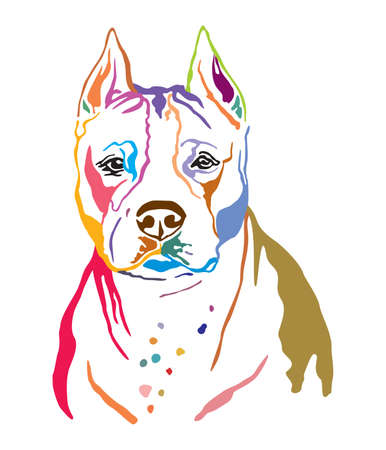 Colorful decorative contour outline portrait of Dog American Staffordshire Terrier, vector illustration in black color isolated on white background. Image for design and tattoo. Stock fotó - 134432765