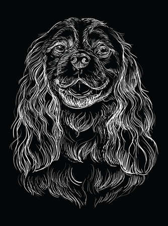 Cavalier King Charles Spaniel vector hand drawing illustration in white color isolated on black background