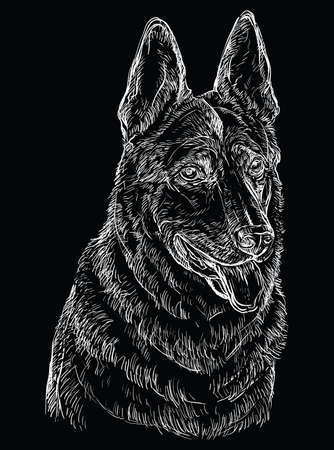 German Shepherd Dog vector hand drawing illustration in white color isolated on black background