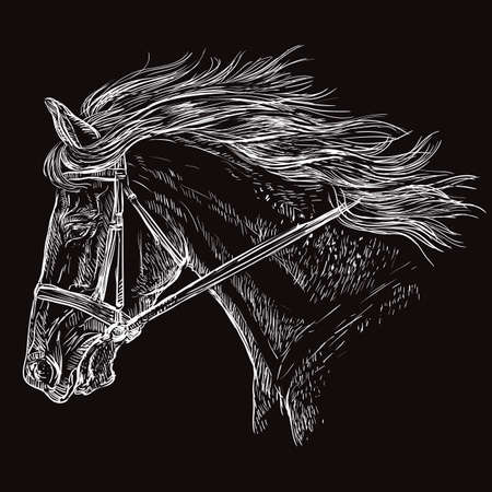 Horse portrait with bridle. Beautiful horse head with long mane in profile in white color isolated on black background. Vector hand drawing illustration. Retro style portrait of running horse.