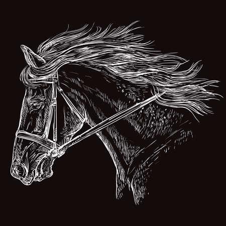 Ritratto di cavallo con briglia. Bella testa di cavallo con criniera lunga di profilo in colore bianco isolato su sfondo nero. Illustrazione del disegno della mano di vettore. Ritratto in stile retrò di cavallo in corsa.