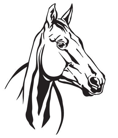 Decorative monochrome contour portrait of beautiful racehorse looking in profile, vector illustration in black color isolated on white background. Image for logo, design and tattoo.