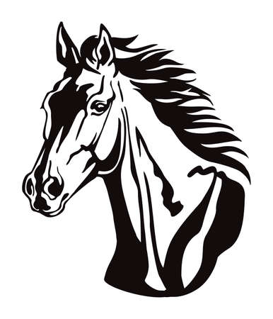 Decorative monochrome contour portrait of beautiful horse with long mane looking in profile, vector illustration in black color isolated on white background. Image for logo, design and tattoo.